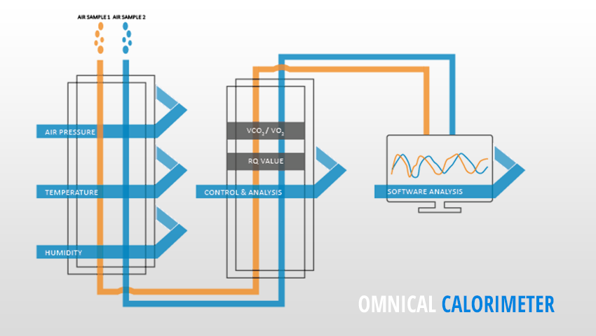 Omnical Indirect Calorimeter Maastricht Instruments